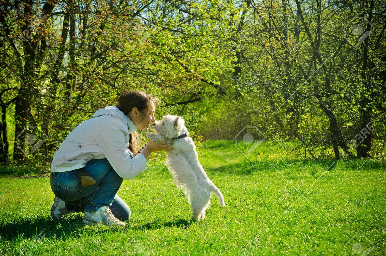 28745066-woman-with-dog-in-the-park